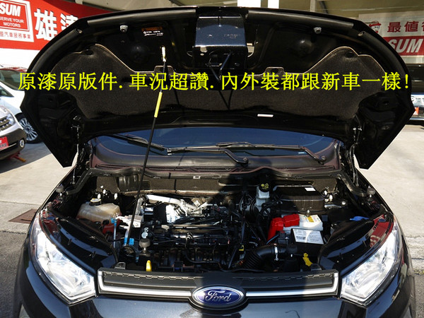 中古車 FORD Ecosport 1.5 圖片